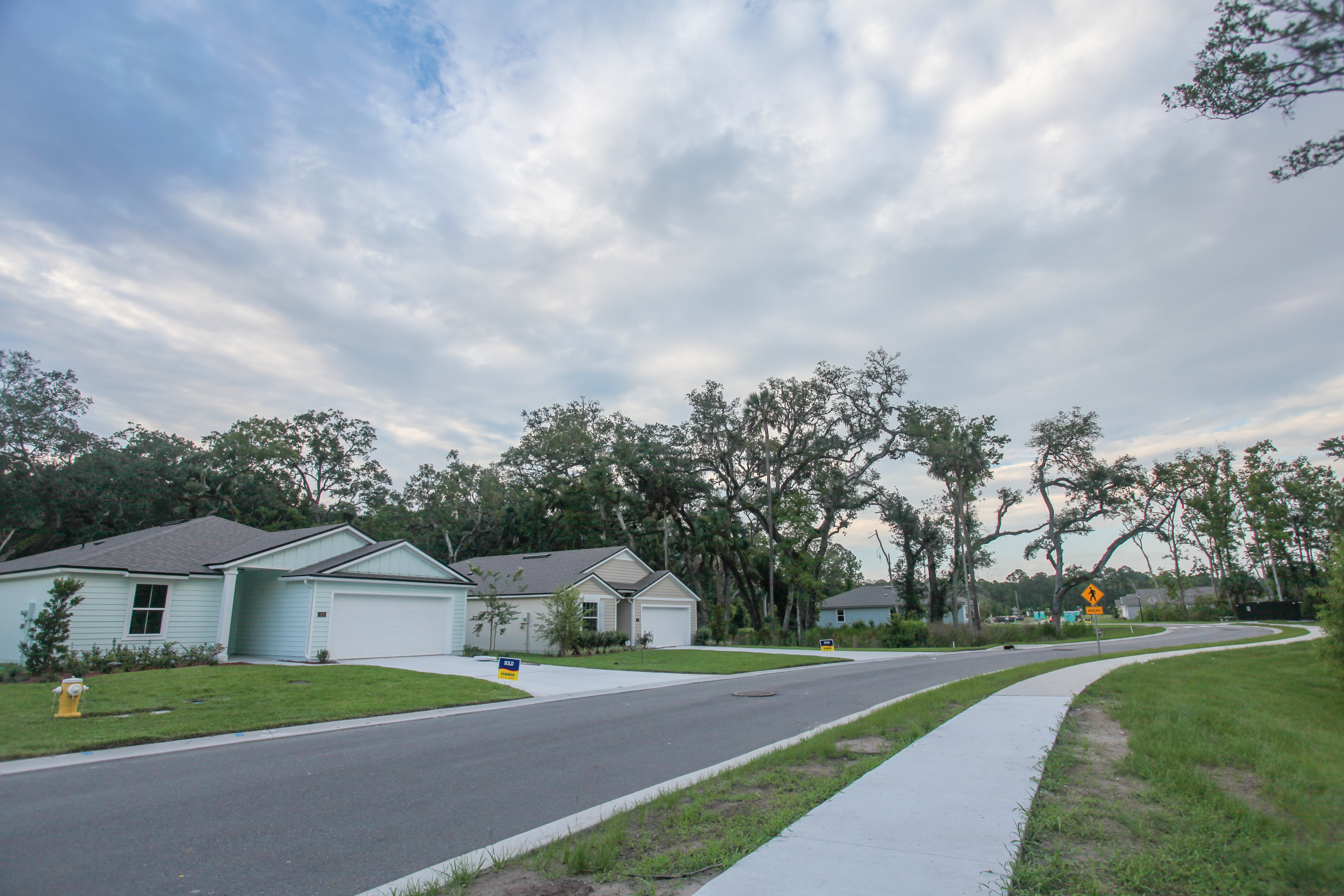 Photo of a roadway through the Chasewoods subdivision showing teal and tan houses