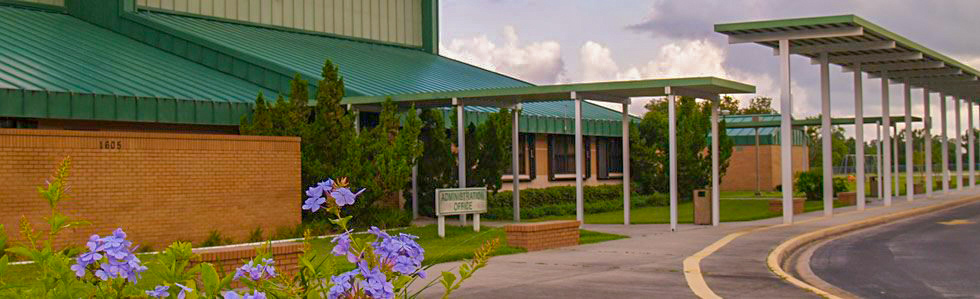 Photo of the entrance to the Osceola Elementary administrator office. The photo shows flowers in the foreground and the green school and its bus loop in the background