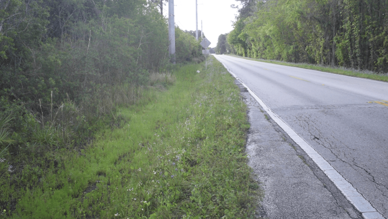 Four Mile Road showing the old, cracked asphalt and grass of the road