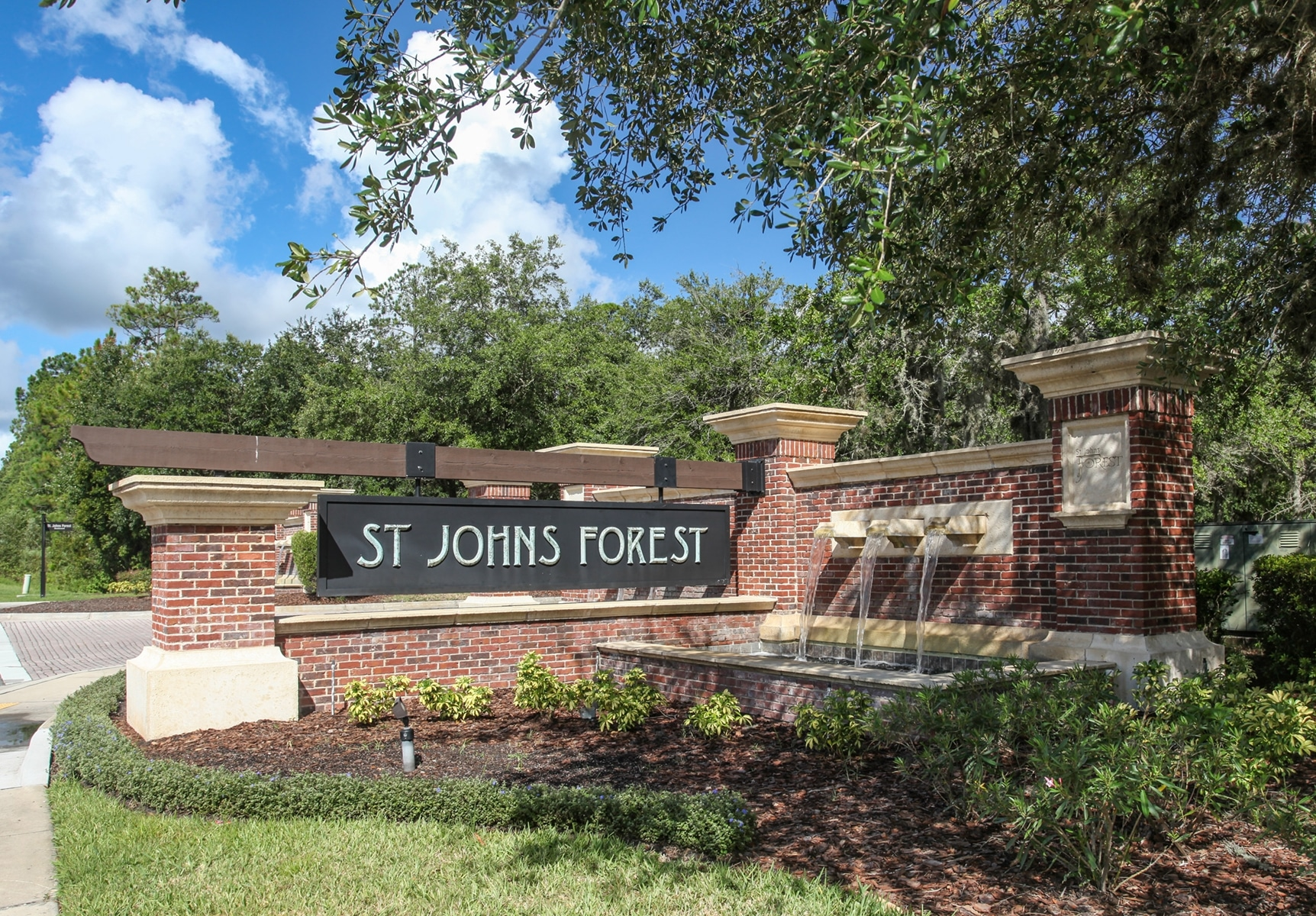 St. Johns Forest